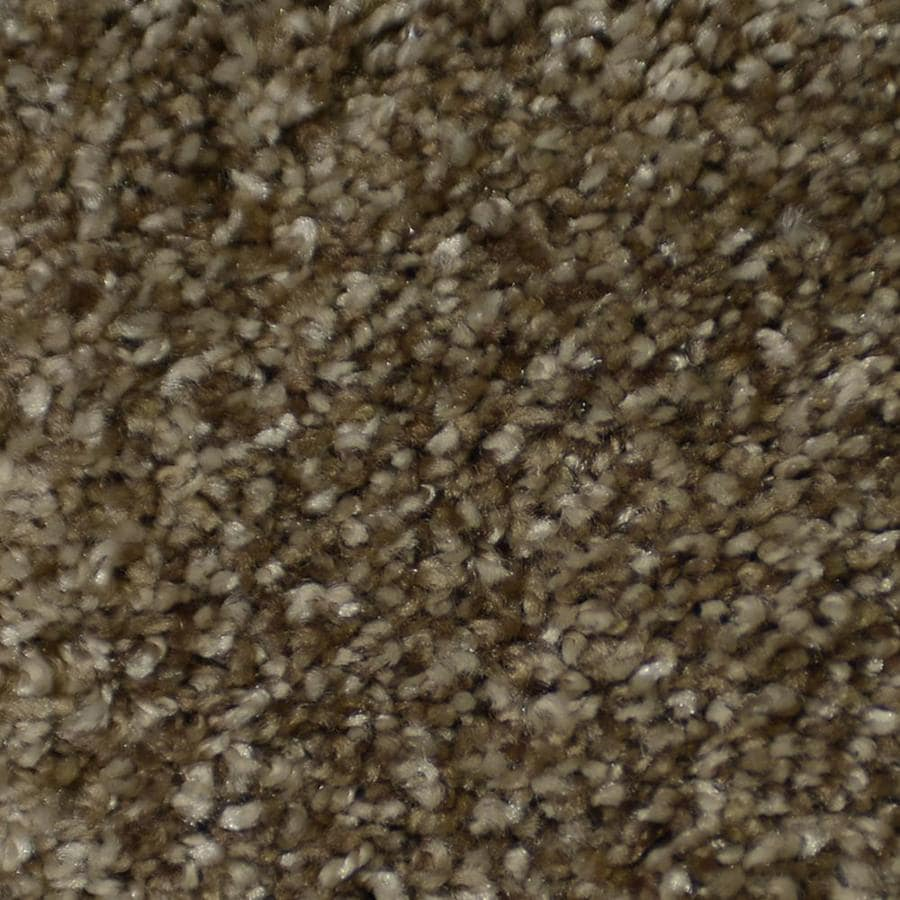 STAINMASTER Active Family Cinema Montage Textured Indoor Carpet