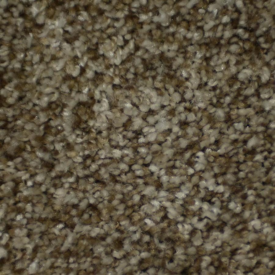 STAINMASTER Active Family Documentary Shandur Textured Indoor Carpet