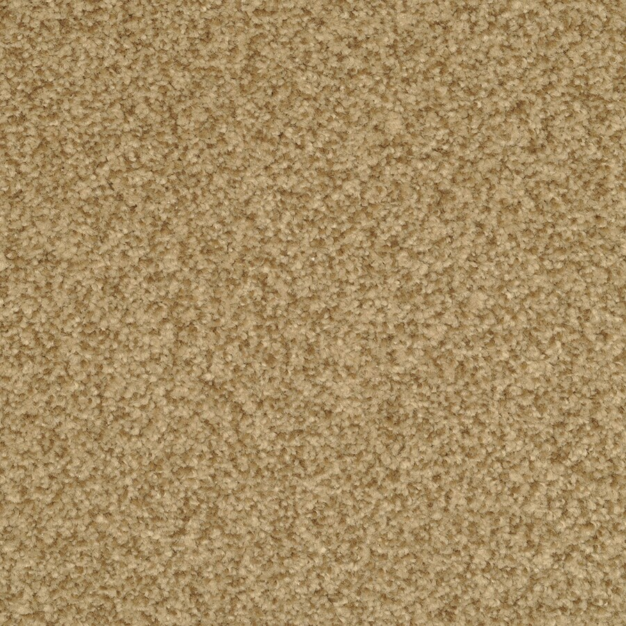 STAINMASTER Active Family Informal Affair Radiant Textured Indoor Carpet