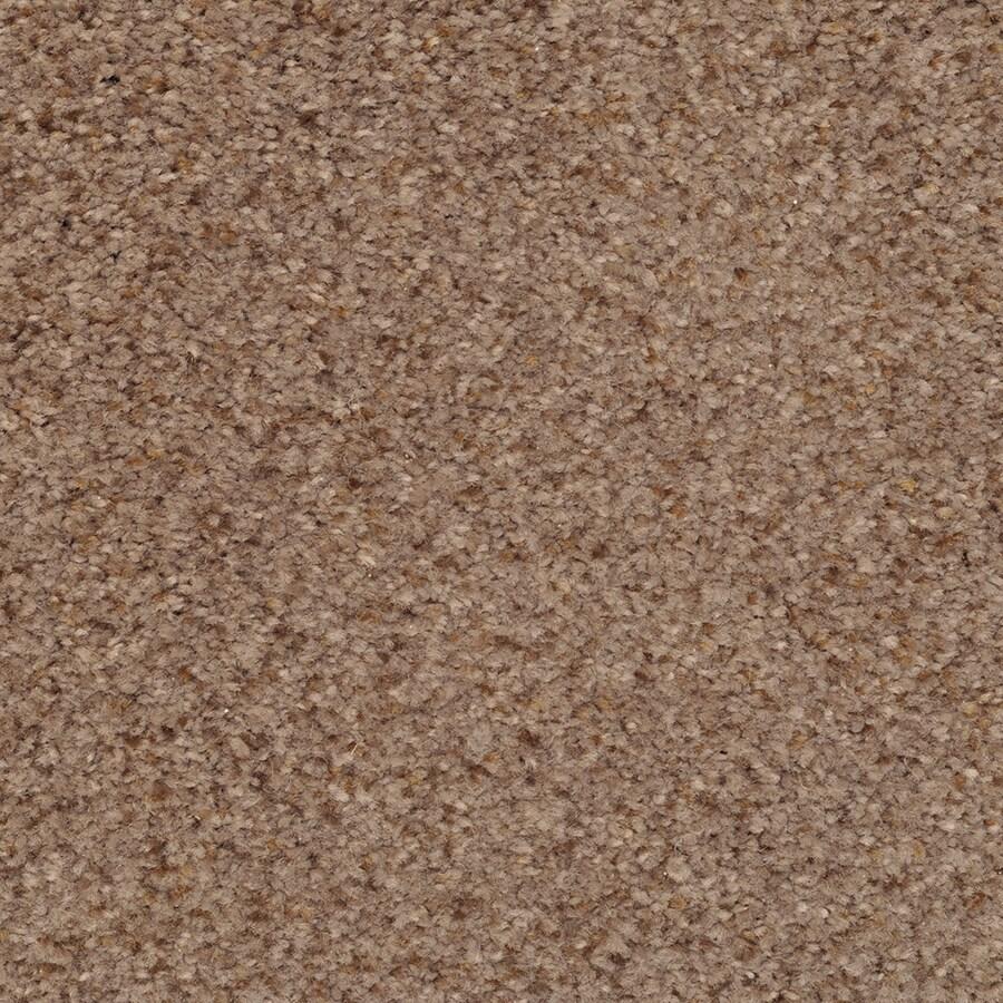 STAINMASTER Active Family Informal Affair Expressway Textured Indoor Carpet