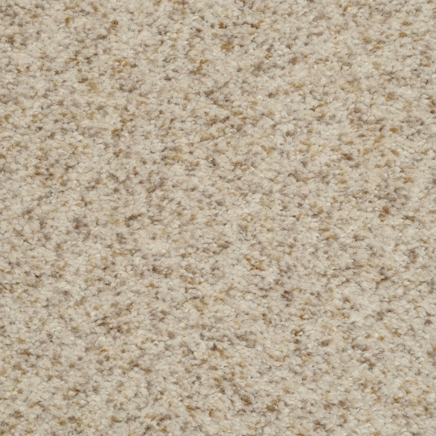 STAINMASTER Active Family Informal Affair City Lights Textured Indoor Carpet