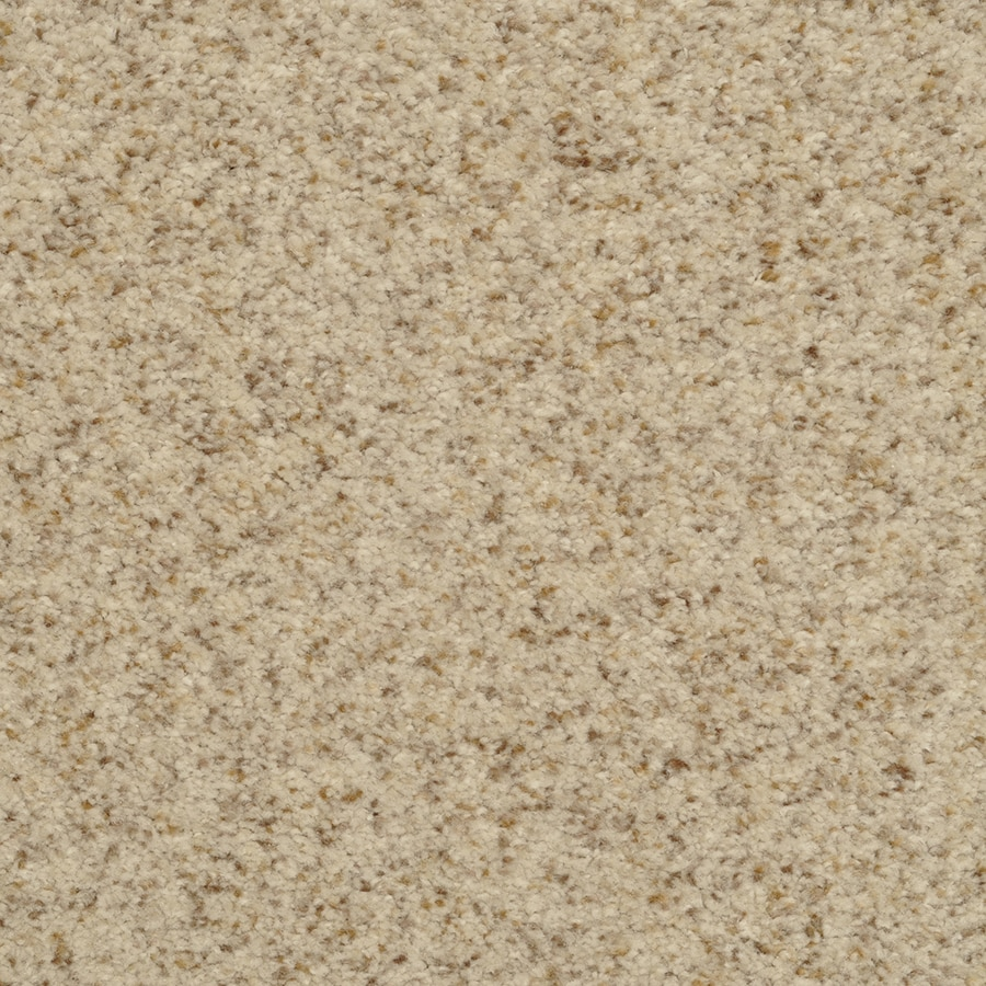 STAINMASTER Active Family Fiesta Magnificent Textured Indoor Carpet
