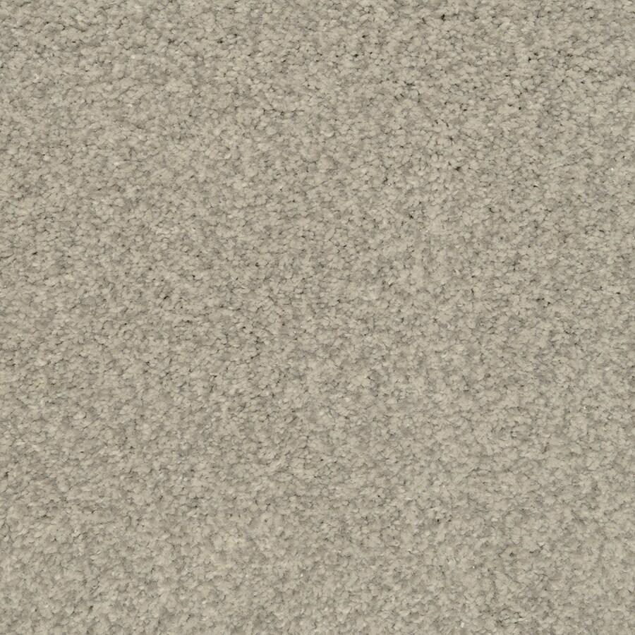 STAINMASTER Active Family Fiesta Shadow Textured Indoor Carpet