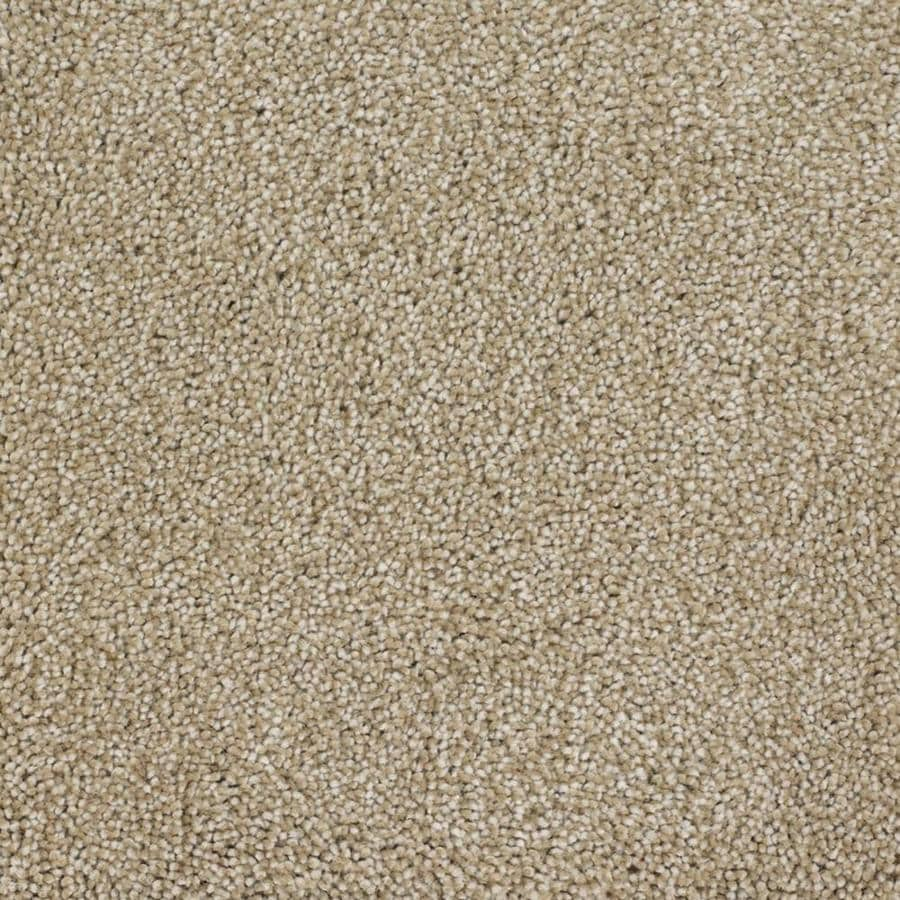 STAINMASTER TruSoft Pleasant Point Avalon Textured Indoor Carpet