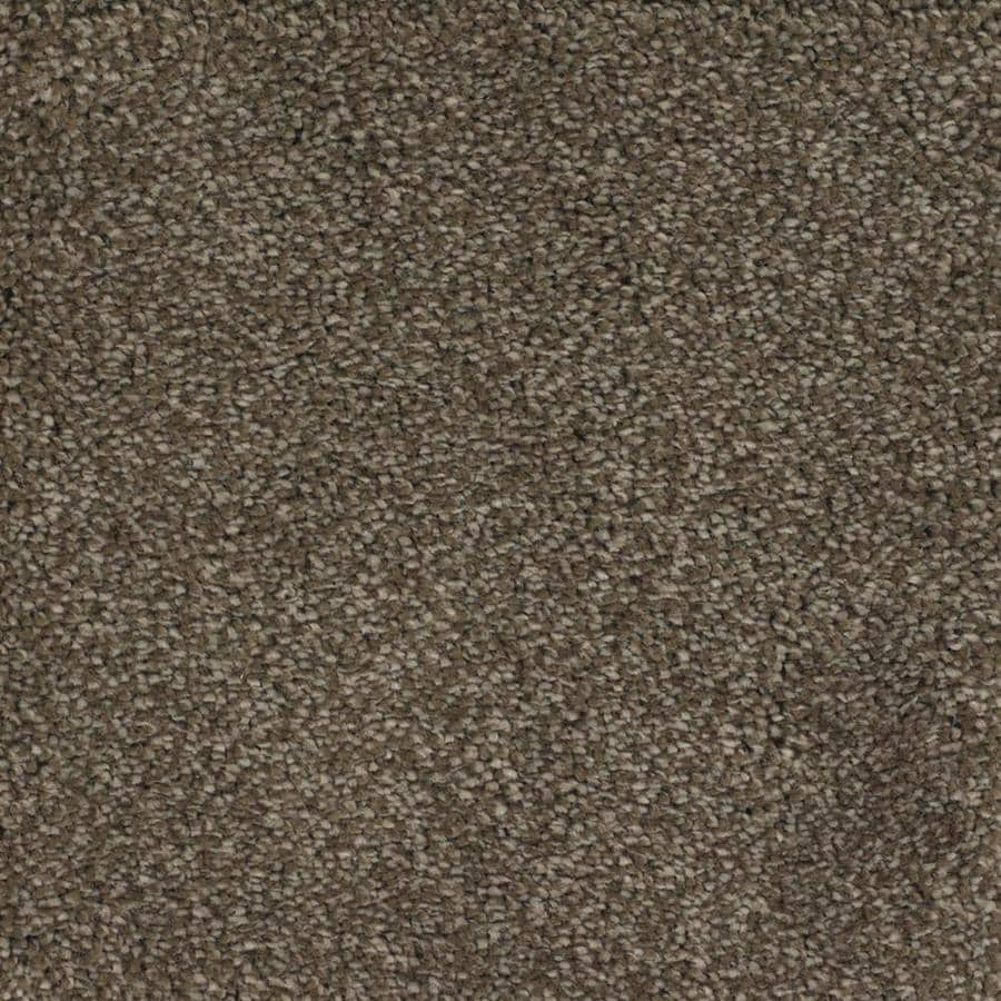 STAINMASTER TruSoft Pleasant Point Kinston Textured Indoor Carpet
