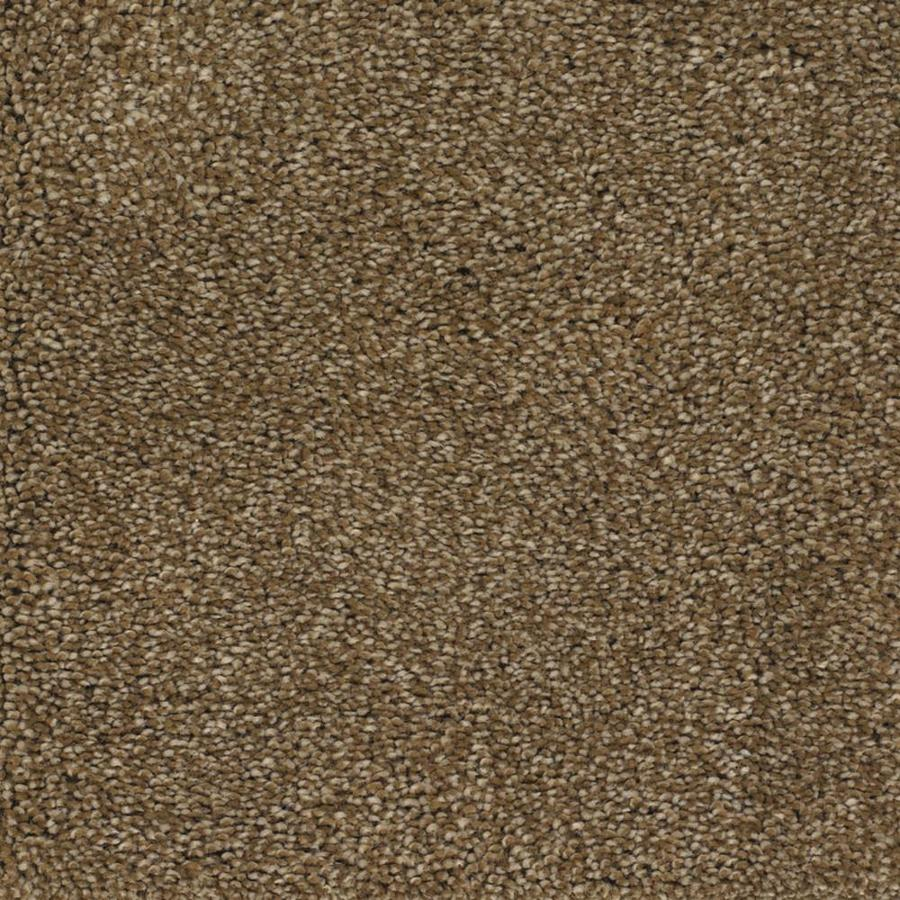 STAINMASTER TruSoft Pleasant Point Gazelle Textured Indoor Carpet
