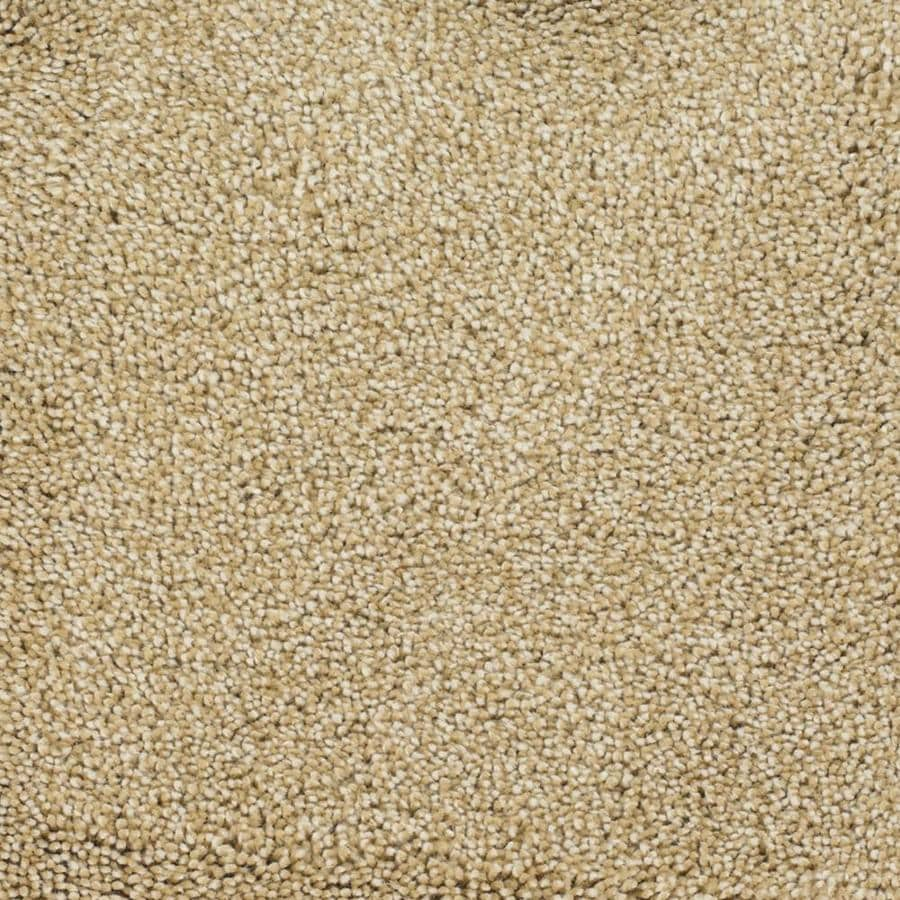 STAINMASTER TruSoft Pleasant Point Horseshoe Textured Indoor Carpet