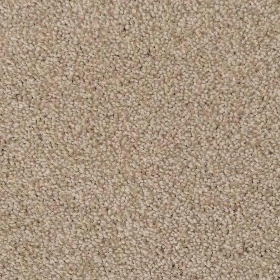 STAINMASTER TruSoft Shafer Valley Zumba Textured Indoor Carpet