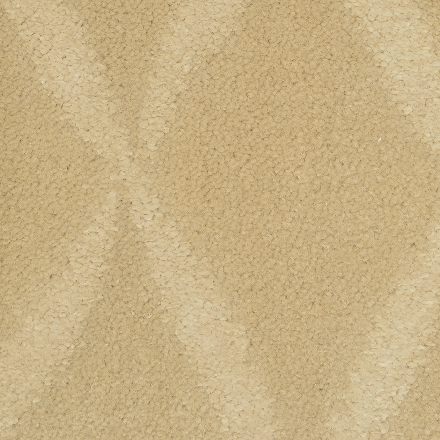 STAINMASTER TruSoft Vineyard Manor Competitive Cut and Loop Indoor Carpet