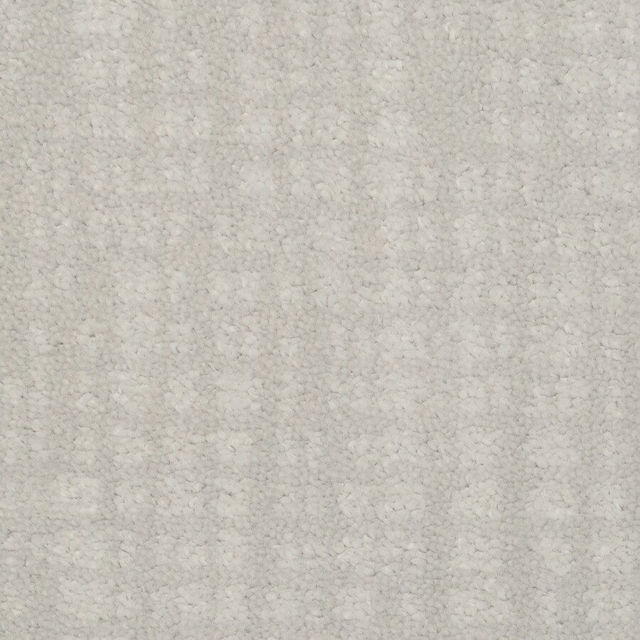 STAINMASTER TruSoft Pine Chapel Moonglow Cut and Loop Indoor Carpet