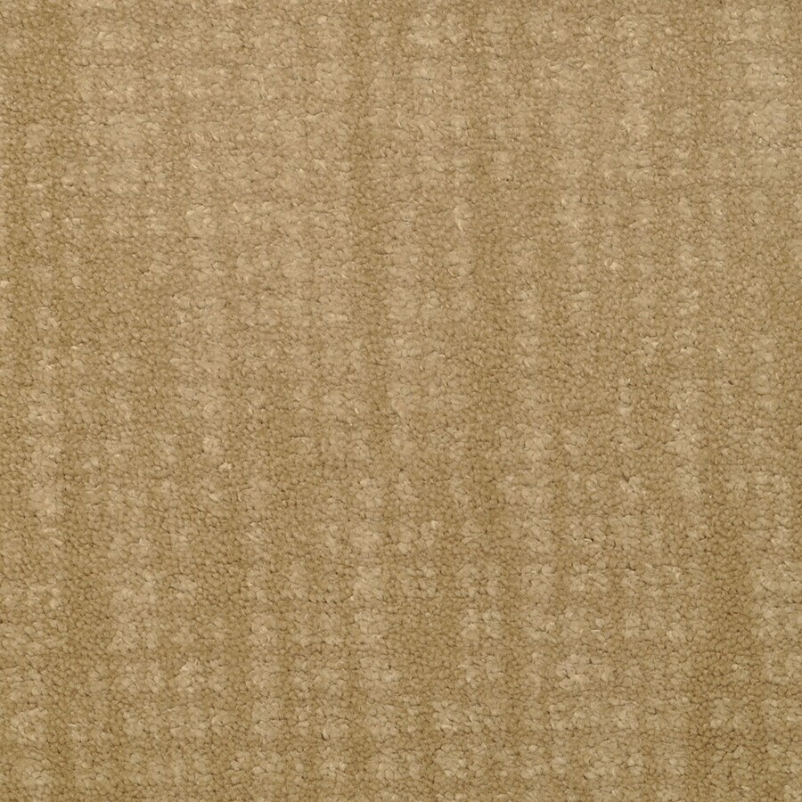 STAINMASTER TruSoft Pine Chapel Glory Days Cut and Loop Indoor Carpet