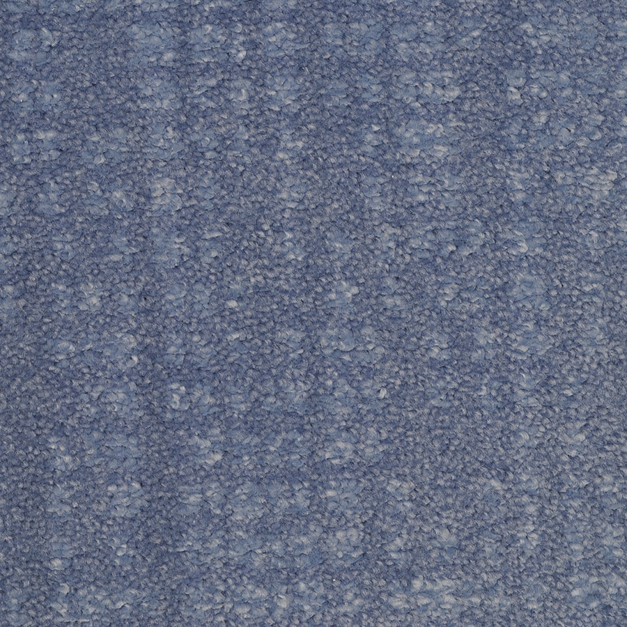STAINMASTER TruSoft Pine Chapel Proximity Cut and Loop Indoor Carpet