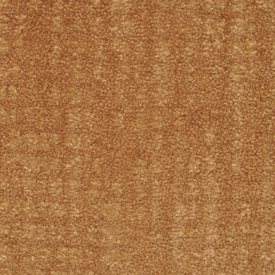 STAINMASTER TruSoft Pine Chapel Saba Cut and Loop Indoor Carpet