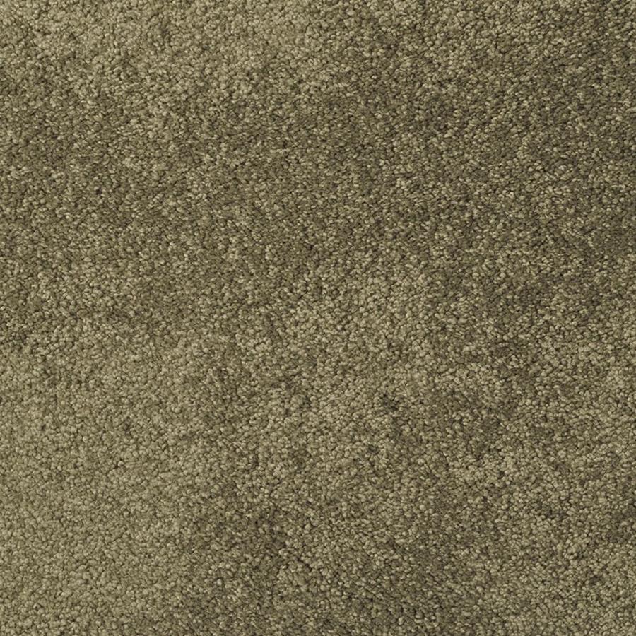 STAINMASTER TruSoft Best of Class Sawgrass Plush Indoor Carpet