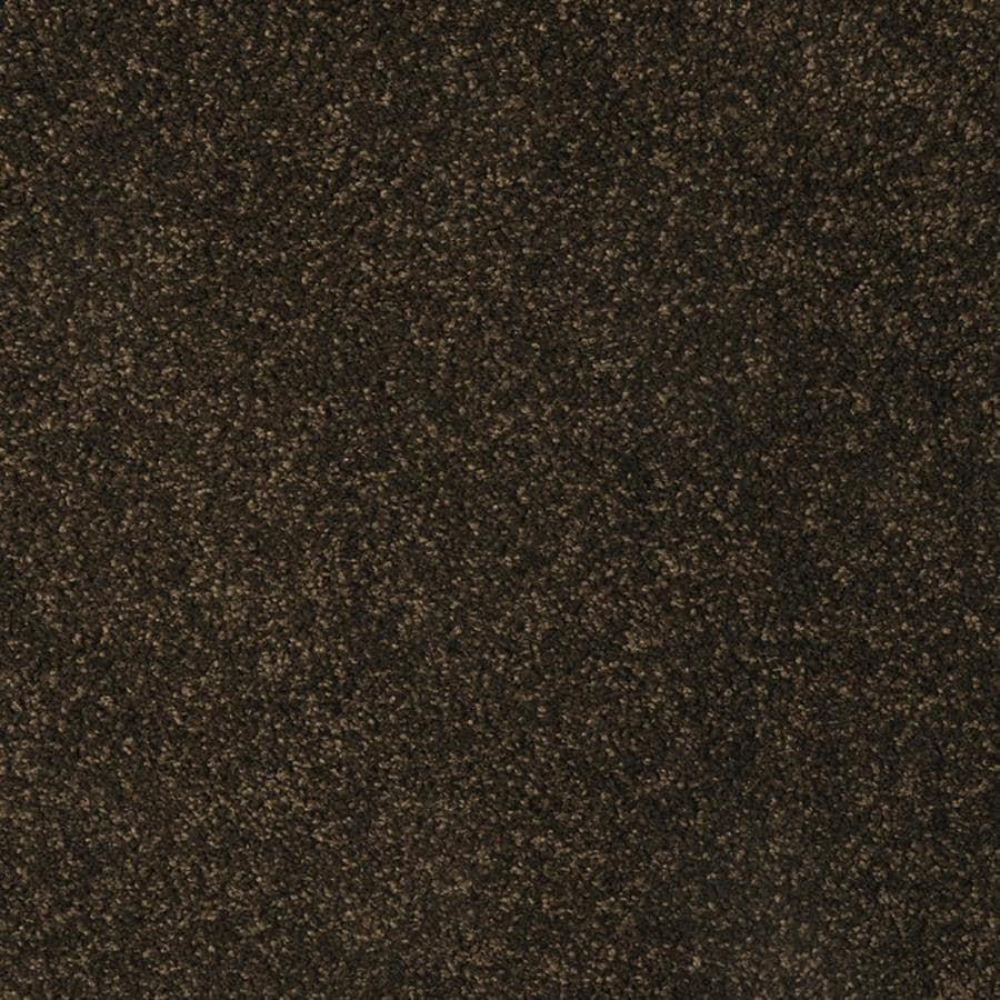 STAINMASTER TruSoft Best of Class Bare Tree Plush Indoor Carpet