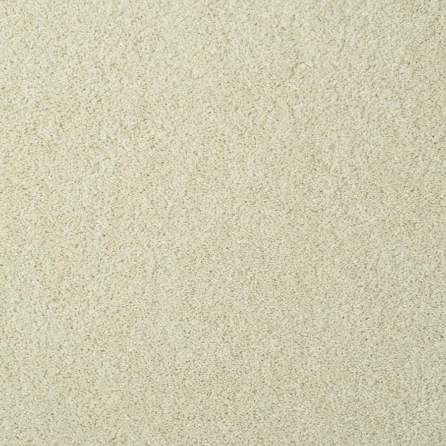STAINMASTER TruSoft Best of Class Pastel Plush Indoor Carpet