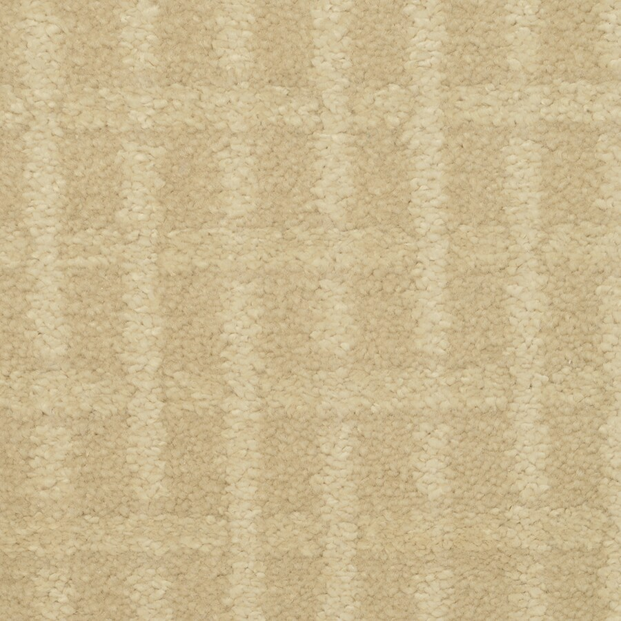 STAINMASTER TruSoft Chateau Avalon Competitive Cut and Loop Indoor Carpet