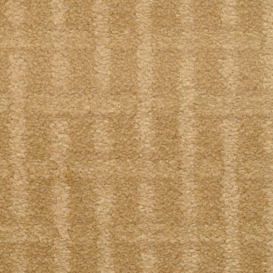 STAINMASTER TruSoft Chateau Avalon Glamour Cut and Loop Indoor Carpet