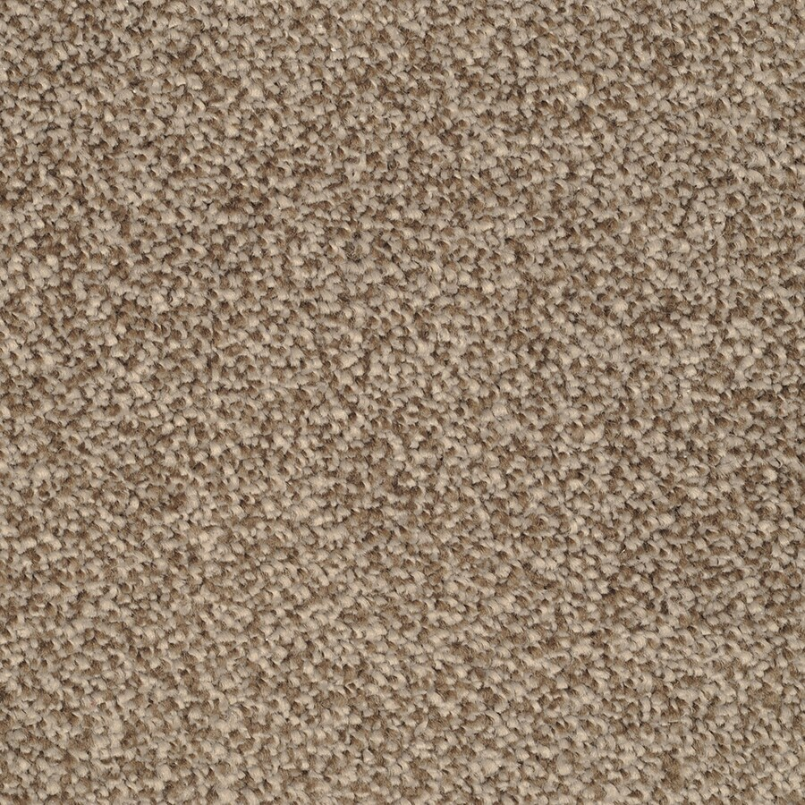 STAINMASTER Shafer Valley Pebbled Shore Rectangular Indoor Tufted Area Rug (Common: 6 x 9; Actual: 72-in W x 108-in L)