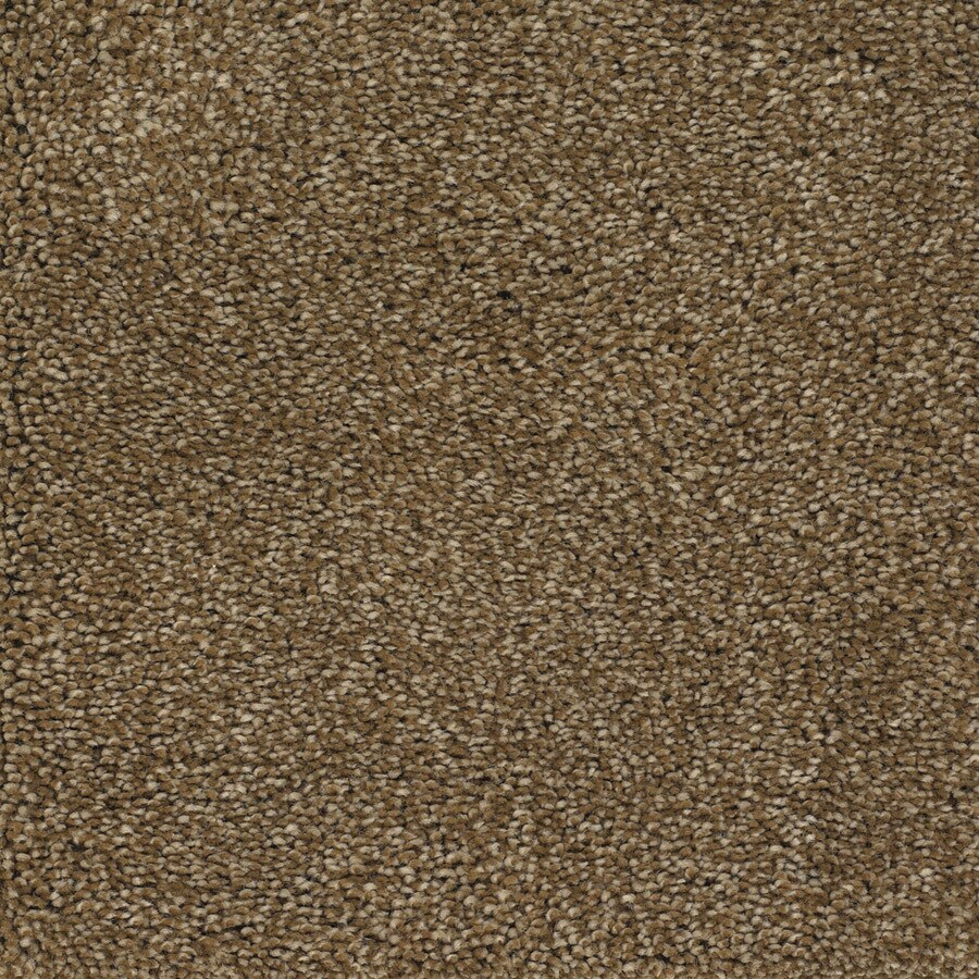 STAINMASTER Briar Patch Gazelle Rectangular Indoor Tufted Area Rug (Common: 8 x 10; Actual: 96-in W x 120-in L)