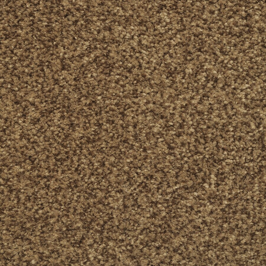 STAINMASTER Informal Affair Autumn Bud Rectangular Indoor Tufted Area Rug (Common: 8 x 10; Actual: 96-in W x 120-in L)