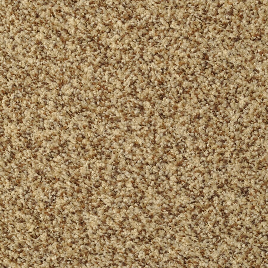 STAINMASTER Cinema Tuscany Rectangular Indoor Tufted Area Rug (Common: 8 x 10; Actual: 96-in W x 120-in L)