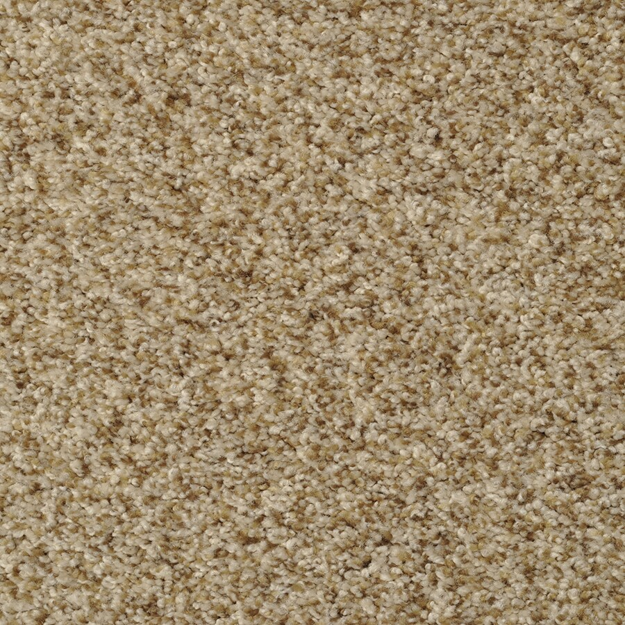 STAINMASTER Documentary Pebble Beach Rectangular Indoor Tufted Area Rug (Common: 8 x 10; Actual: 96-in W x 120-in L)