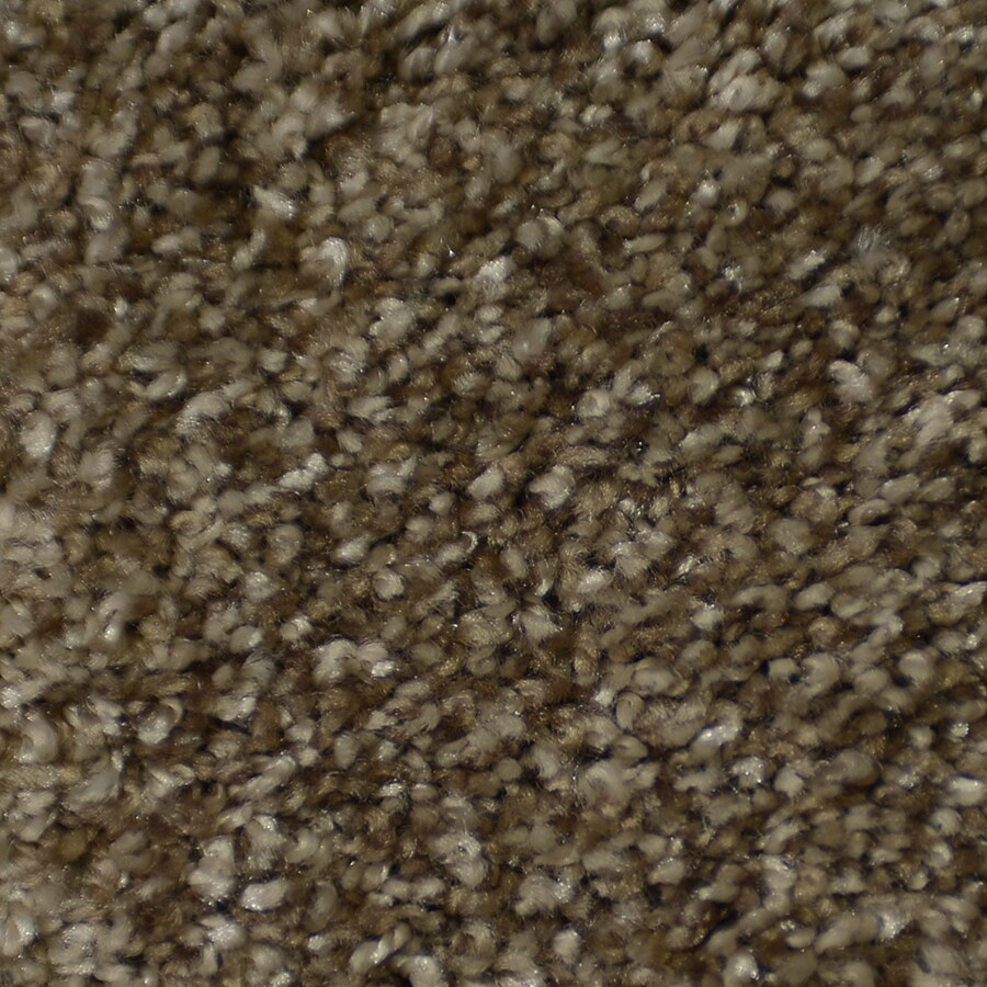 STAINMASTER On Broadway Montage Rectangular Indoor Tufted Area Rug (Common: 8 x 10; Actual: 96-in W x 120-in L)