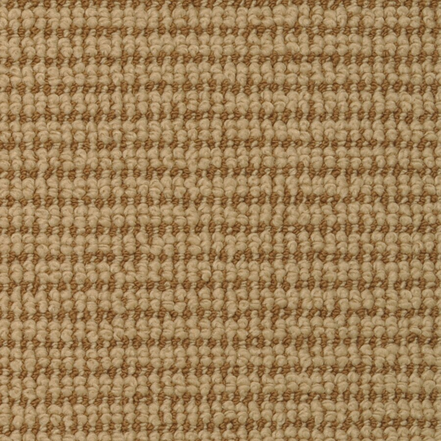 STAINMASTER Morning Glory Honey Bells Rectangular Indoor Tufted Area Rug (Common: 6 x 9; Actual: 72-in W x 108-in L)