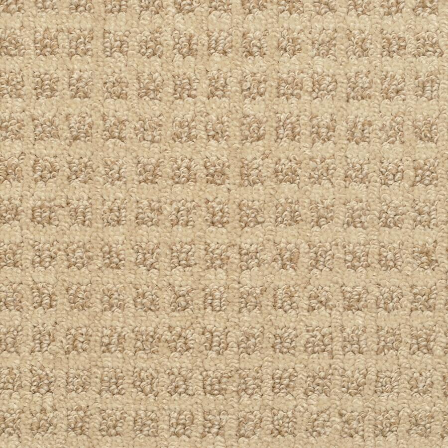 STAINMASTER Medford Thornbush Rectangular Indoor Tufted Area Rug (Common: 6 x 9; Actual: 72-in W x 108-in L)