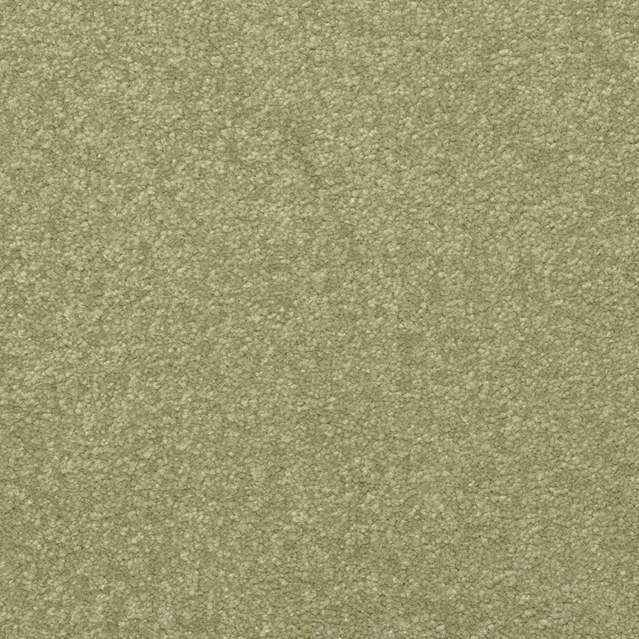 STAINMASTER Influential Jalapeno Rectangular Indoor Tufted Area Rug (Common: 6 x 9; Actual: 72-in W x 108-in L)