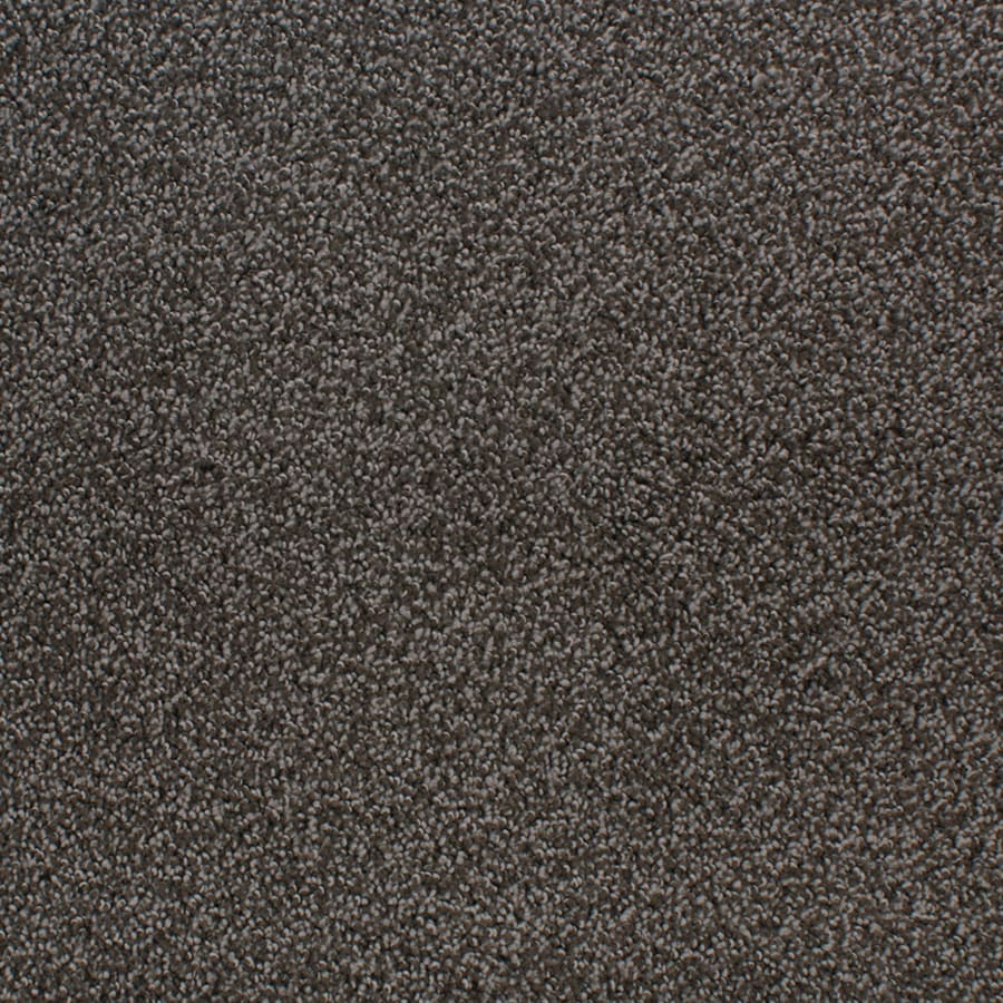 STAINMASTER Oak Grove Farce Rectangular Indoor Tufted Area Rug (Common: 8 x 10; Actual: 96-in W x 120-in L)