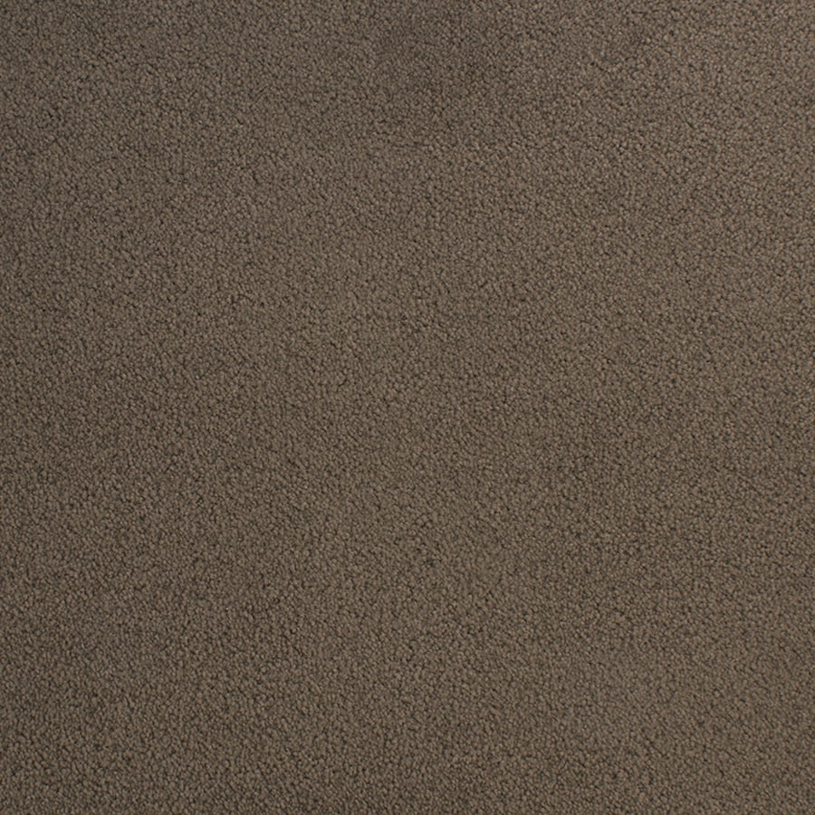 STAINMASTER Capri Place Relish Rectangular Indoor Tufted Area Rug (Common: 8 x 10; Actual: 96-in W x 120-in L)