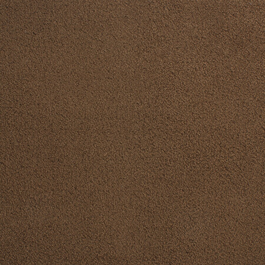 STAINMASTER Capri Place Plat Rectangular Indoor Tufted Area Rug (Common: 8 x 10; Actual: 96-in W x 120-in L)