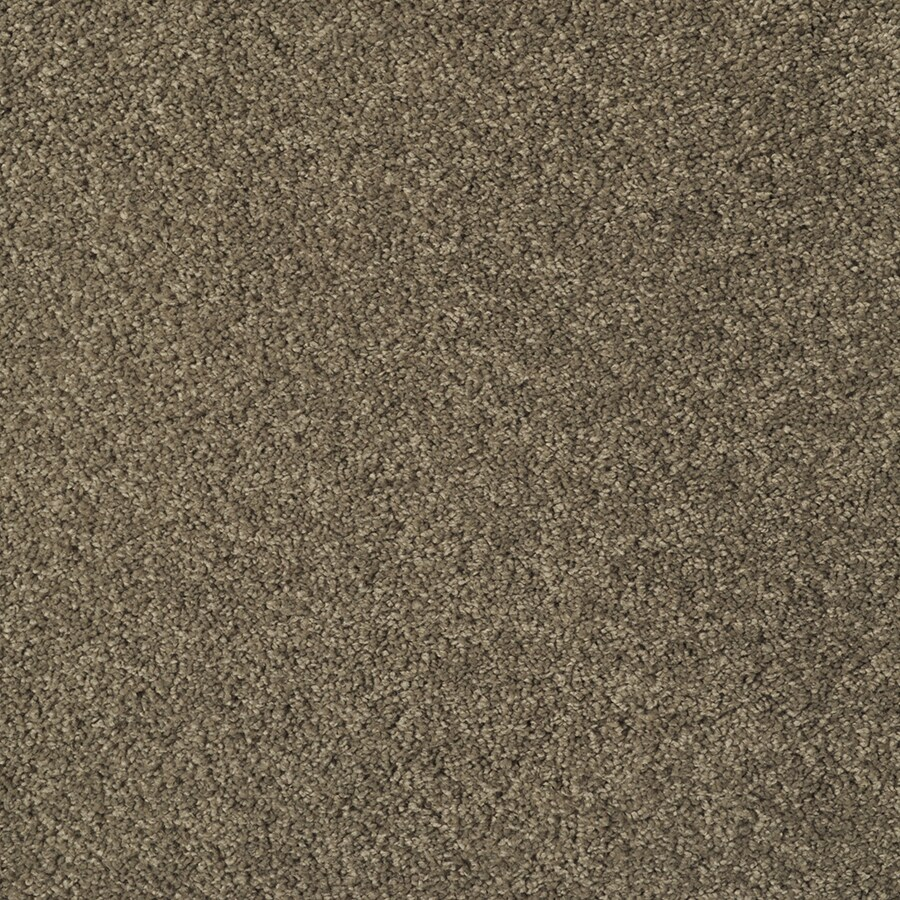 STAINMASTER Best Of Class Square Dance Rectangular Indoor Tufted Area Rug (Common: 6 x 9; Actual: 72-in W x 108-in L)