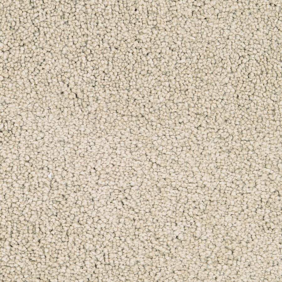 STAINMASTER Active Family Stellar Colony Textured Indoor Carpet