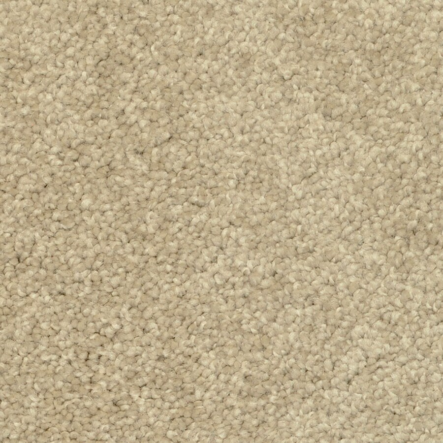 STAINMASTER PetProtect Day Trip Hot Stones Frieze Indoor Carpet