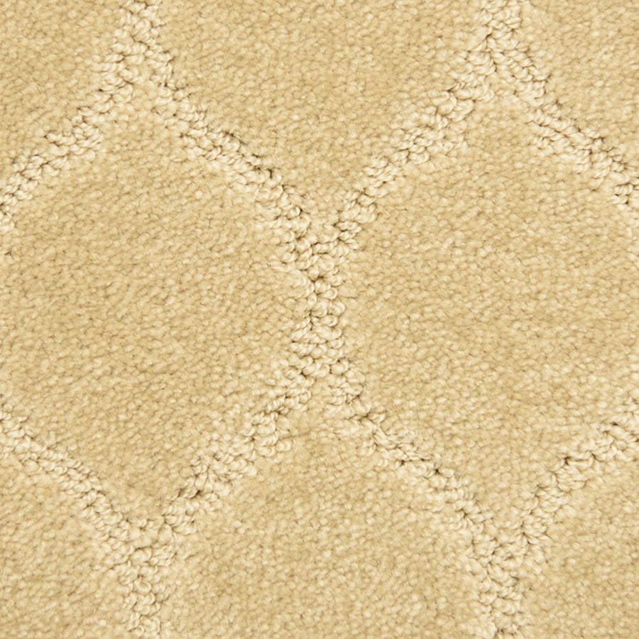 STAINMASTER PetProtect Iconic Secure Pattern Indoor Carpet