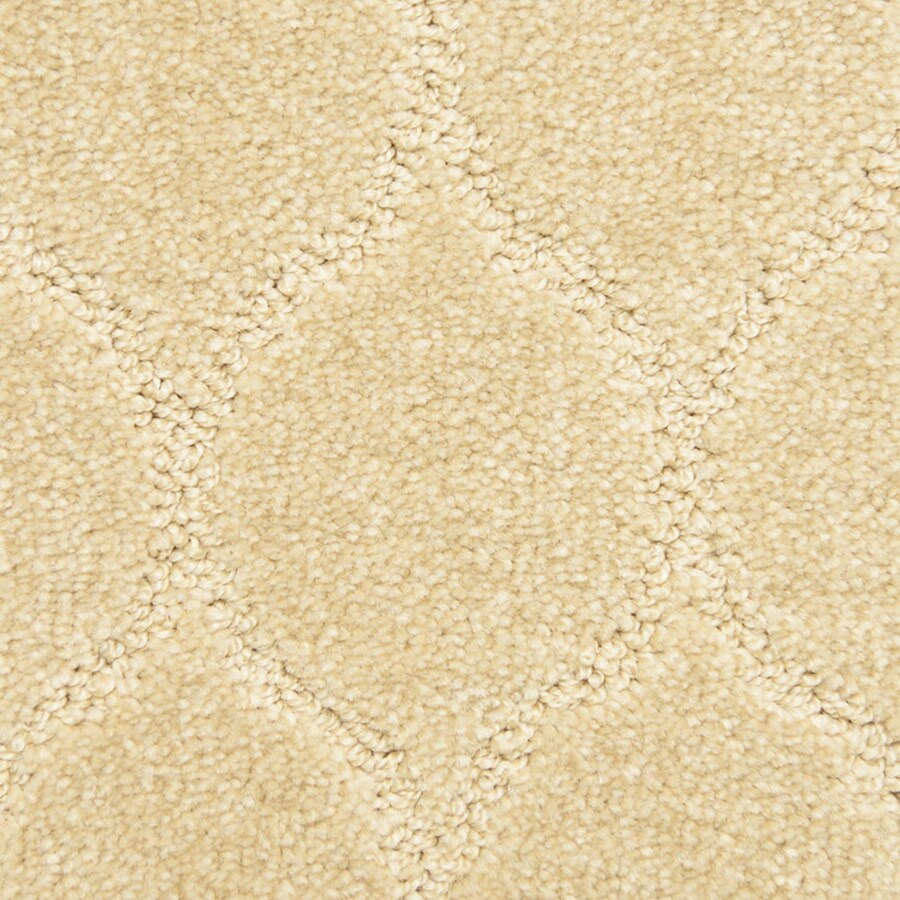 STAINMASTER PetProtect Iconic Fancy Pattern Indoor Carpet