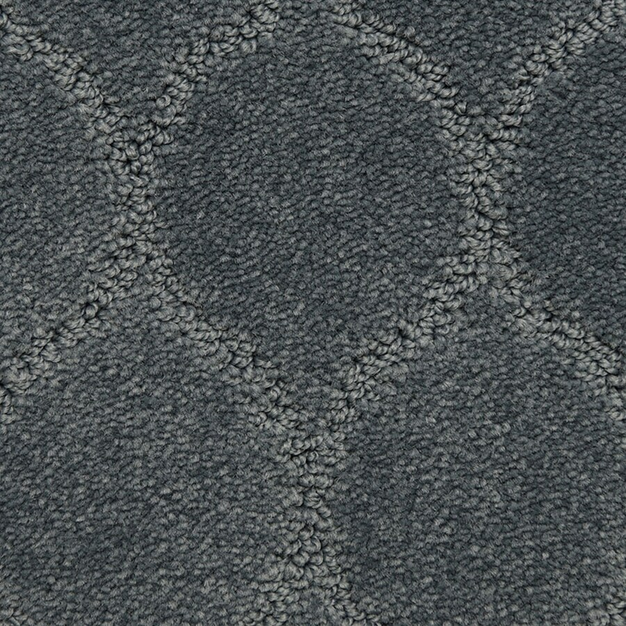 STAINMASTER PetProtect Iconic Optimistic Pattern Indoor Carpet