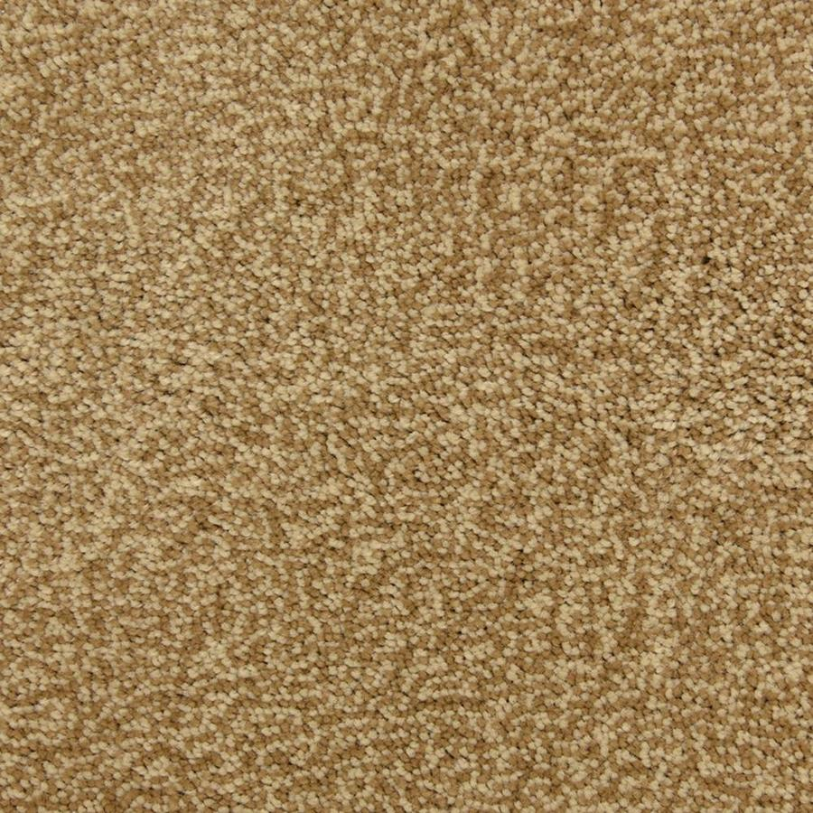 STAINMASTER PetProtect Magnetic Bombay Frieze Indoor Carpet
