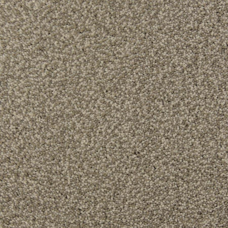 STAINMASTER PetProtect Entranced Limestone Frieze Indoor Carpet