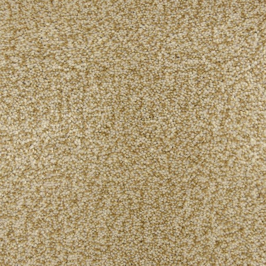 STAINMASTER PetProtect Hypnotized Fossil Frieze Indoor Carpet