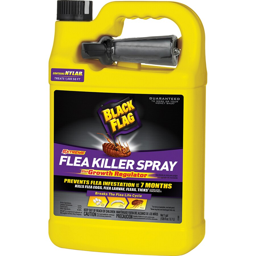 BLACK FLAG Extreme Flea Killer Spray Plus Growth Regulator Ready-To-Use