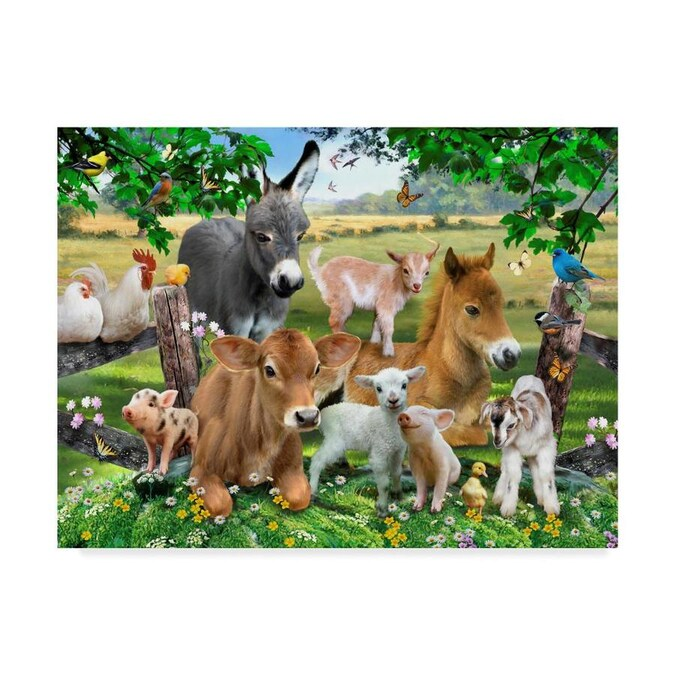 Trademark Fine Art Animals Framed 14 In H X 19 In W Animals Canvas Print In The Wall Art Department At Lowes Com