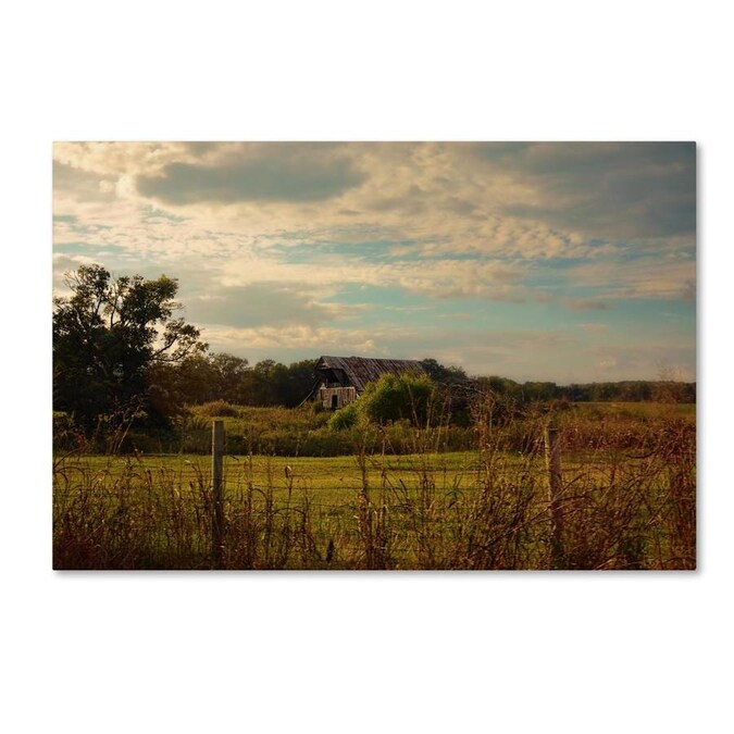 Trademark Fine Art Ariane Moshayedi Middle Of Nowhere 30x47 Canvas Art In The Wall Art Department At Lowes Com