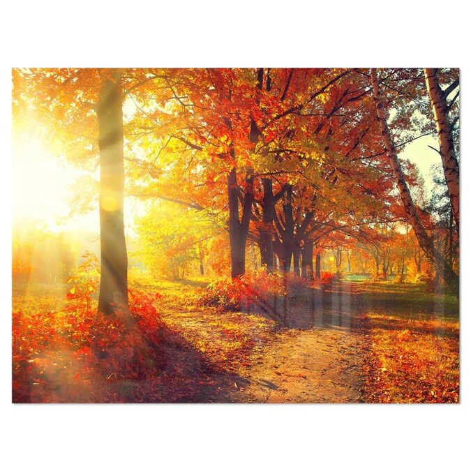 Designart Autumnal Trees In Sunrays Large Landscape Canvas Art Print In The Wall Art Department At Lowes Com