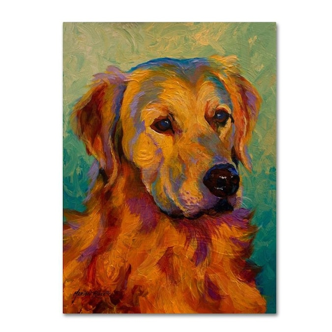 Trademark Fine Art Marion Rose Den Retriever 18x24 Canvas Art In The Wall Art Department At Lowes Com