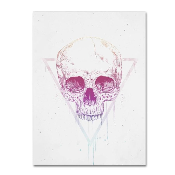 Trademark Fine Art Balazs Solti Skull In Triangle 18x24 Canvas Art In The Wall Art Department At Lowes Com