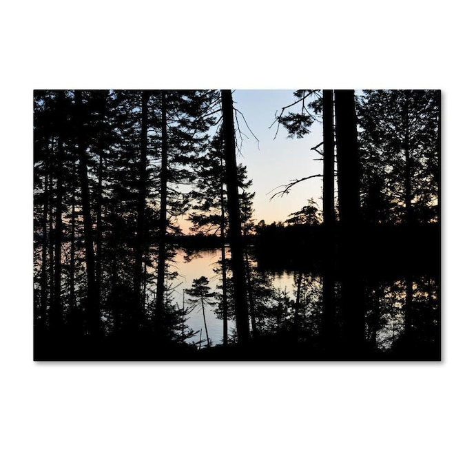 Trademark Fine Art Nicole Dietz Sunset Through The Trees 12x19 Canvas Art In The Wall Art Department At Lowes Com